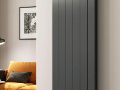 Reina Casina double vertical radiator in anthracite